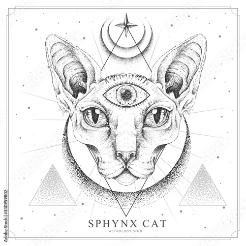 Obraz na plátne Modern magic witchcraft card with  sphynx cat and all-seeing eye