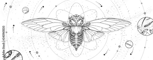 Fotografia Modern magic witchcraft card with solar system and cicada