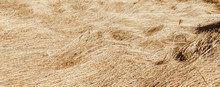 Dry Grass, Crushed By Wind And Rain, Lies In A Field. Yellow Dead Grass, Natural Background.