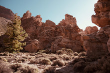 Rough Stony Cliffs And Small Shrubs With Clear Blue Sky On Background In Teide, Spain