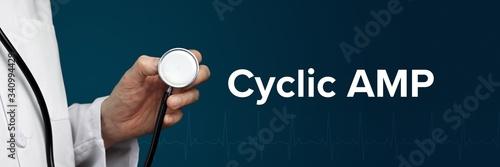 Photo Cyclic AMP