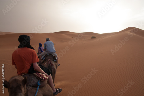 Fototapety, obrazy: Tourists Riding Camels In Desert