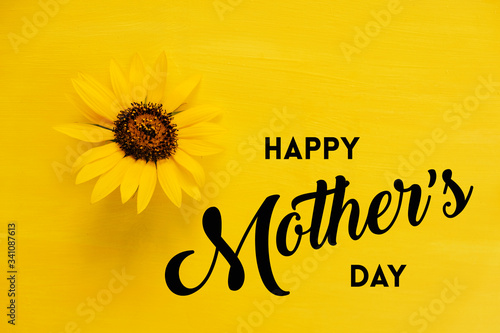 Fototapeta Yellow sunflower on bright Mother's day background with text. obraz