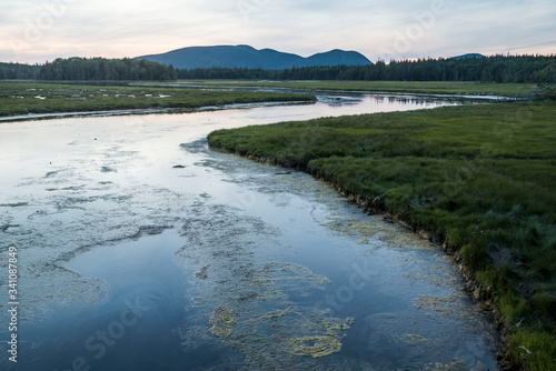 view of marsh land in acadia maine Wallpaper Mural