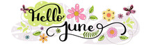 Hello June. JUNE Month Vector With Flowers And Leaves. Decoration Floral. Illustration Month June