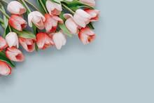 Tulips Arrangement With Copy S...