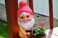 Close-up Of Garden Gnome