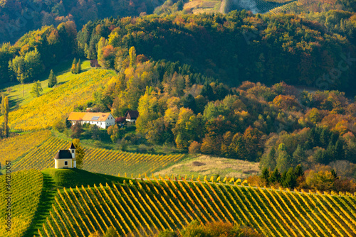 Fototapety, obrazy: pastel forests on a hill and the house at the top