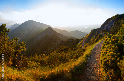 hiking trail at herzogstand mountain, evening in the bavarian alps Wallpaper Mural