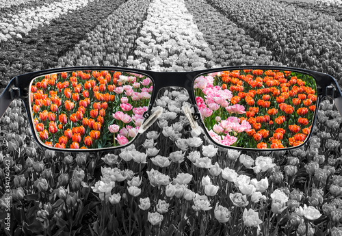 Through glasses frame Canvas-taulu