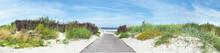 Baltic Sea Beach - Dune Path P...