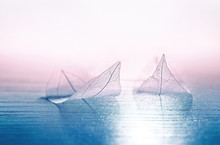 Two Ransparent Skeleton Leaves In Form Of Ships At Sea In A Fog On Blue And Pink Background. Romantic Artistic Image Close-up Macro. Artistic Image Romantic Travel Dreams.
