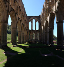 Columns At  Rievaulx Abbey Wit...