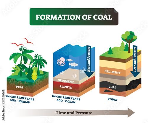 Fotografie, Tablou Formation of coal vector illustration