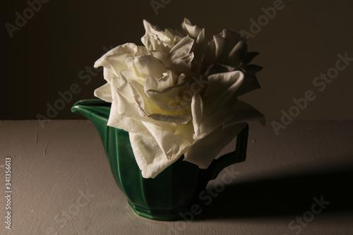 Stampa su Tela Romantica rosa bianca, in vaso vintage isolato su fondo grigio: primo piano