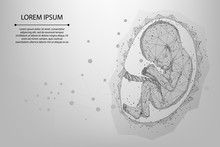 Abstract Mesh And Line Pregnancy Low Poly Wireframe Illustration Of Baby