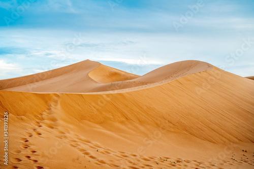 Slika na platnu Many footprints on sand dunes of Sahara Desert, Morocco.