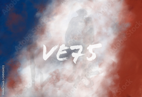 Victory in Europe French Flag 75th Wallpaper Mural