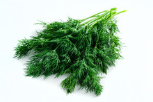 Sprig Of Dill On A White Backg...