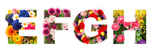 Floral Lettering Alphabet E F G H Flower Heads Bouquet
