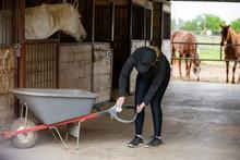 Covid-19 Barn Disinfection
