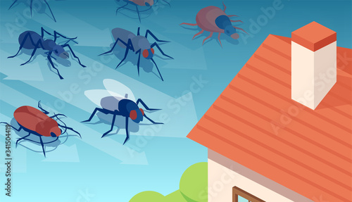 Fotografia, Obraz Vector of insects invading residential house