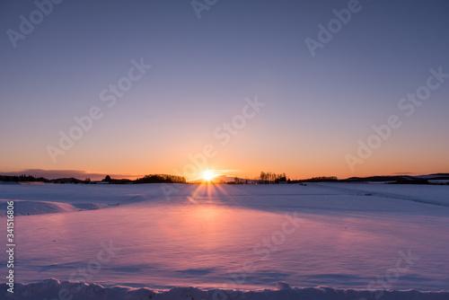北海道の雪原の朝日 Fototapet