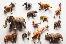 Group Of Animals Toys Isolated Over White Background. Animals Toys.