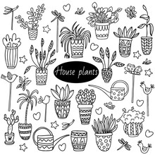 Houseplant Set With Watering C...