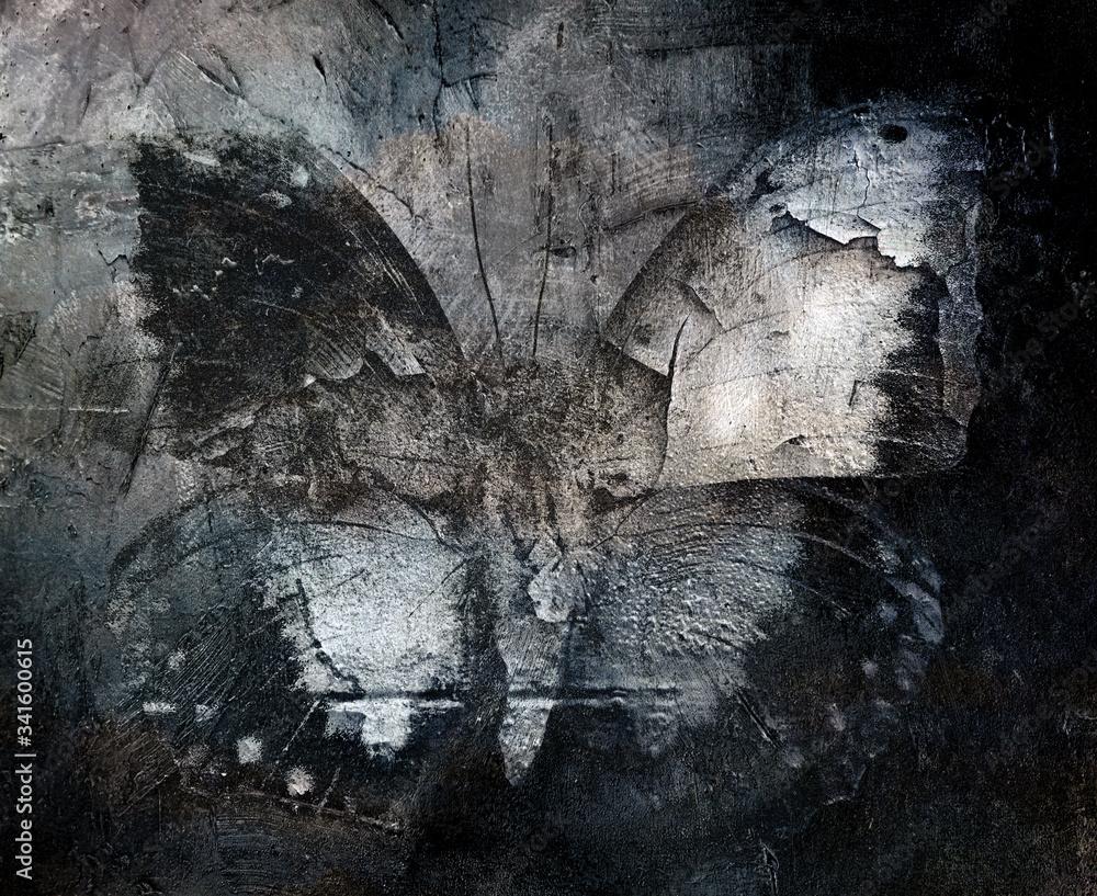 Fototapeta grunge abstract butterfly texture