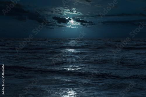 Baltic sea at moonlight Canvas Print