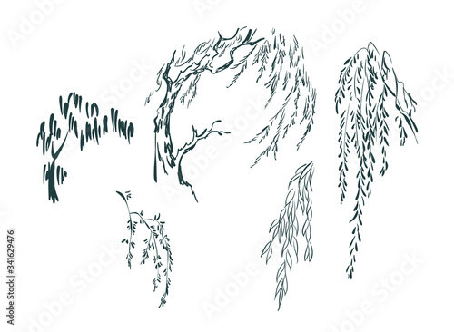 willow tree card nature landscape view vector sketch illustration japanese chine Fototapet