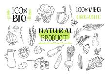 Natural Product. Set Of Variou...