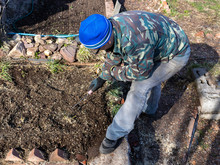 A Man In Working Clothes, Glasses And Gloves Works With Gardening Tools. He Has A Small Rake In His Hand, A Blue Hat On His Head, Light Jeans, And A Khaki Shirt. It's Sunny Around Here