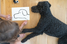 Directly Above View Of Young Child Drawing A Portrait Of Her Black Standard Poodle Laying Down Next To Her