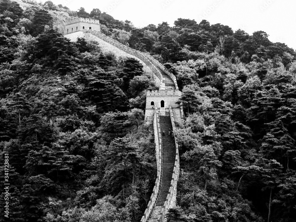 Fotografie, Obraz High Angle View Of Great Wall Of China And Trees