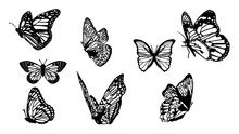 Butterflies Carve Set, Vector ...