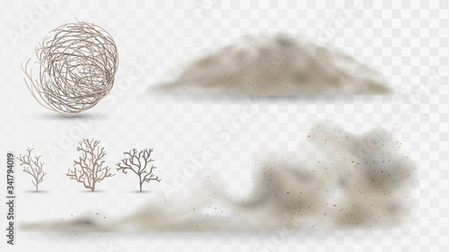 Fototapeta Desert plants and dust, arid climate elements on a white background, tumbleweed and sandstorms obraz