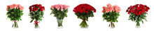 Set With Beautiful Rose Flowers On White Background. Banner Design