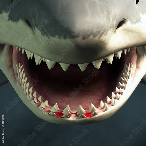 Photographie A close up of a great white shark's open mouth showing rows of sharp teeth ready to take a bite out of an unfortunate beach goer
