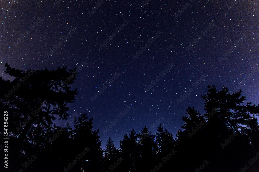 Fototapeta starry night sky