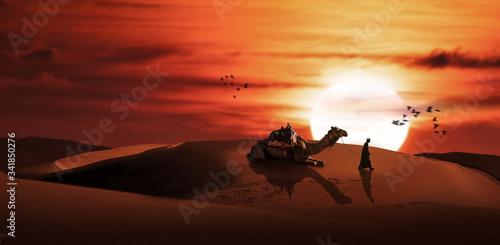 a silhouette men with camel in desert sunset scenery. Slika na platnu