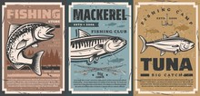 Fishing Camp Club And Fisher E...