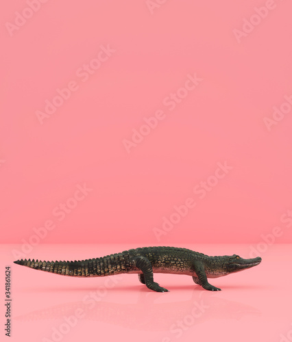 Crocodile on pastel color background,3d rendering Wall mural