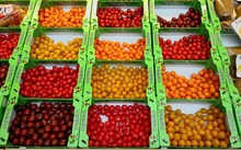 High Angle View Of Tomatoes Di...