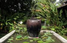 Ceramic Flower Pot In Pond At Garden