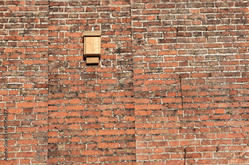 Bat box on an old red  brick wall specifically designed to provide shelter for r Canvas Print