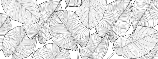 Nature background vector. Black and white floral pattern, Split-leaf Philodendron plant with monstera plant line arts, Vector illustration.