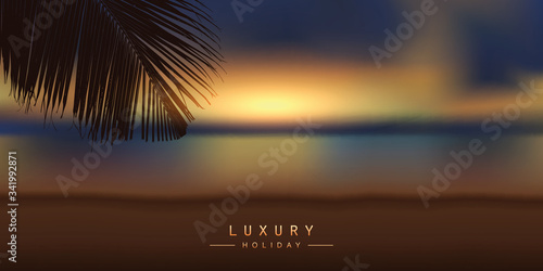 luxury holiday design with tropical sunset background and palm leaf vector illus Fototapet