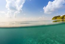 Underwater Tropical Coral Reef...